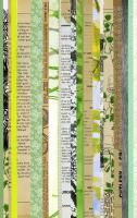 Paper Strip Collage C #90943