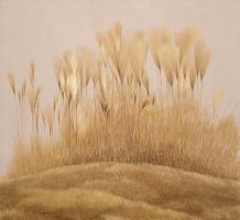 Grassland Calm #86903