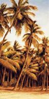 Island Sunset II #RDI4127