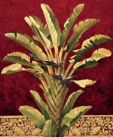 Traveler^s Palm #RDI4137