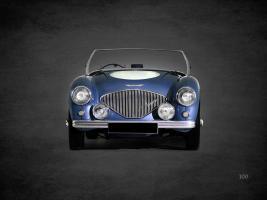 Austin-Healey 100 1953 #RGN114388
