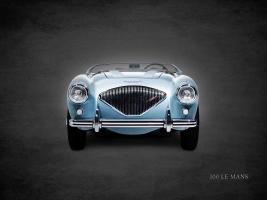 Austin-Healey 100 LeMans 1956 #RGN114389