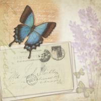 Butterfly Lavender B #87468