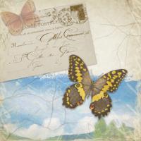 Butterfly Meadow B #87470