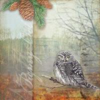 Lodge Owl #87482