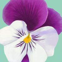 Flower Art 2 #91729