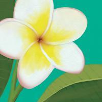 Flower Art 5 #91732