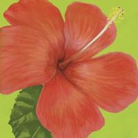 Flower Art 9 #91736