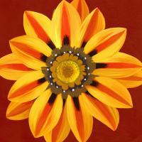 Flower Art 10 #91737