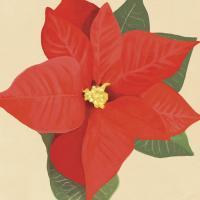 Flower Art 12 #91739