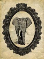 Framed Elephant #89752