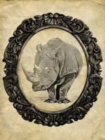 Framed Rhinoceros #89756