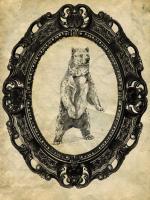 Framed Grizzly Bear #89758