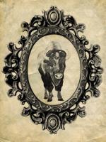 Framed Bison #89760