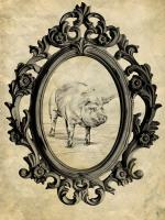 Framed Pig #89764