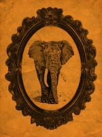 Framed Elephant in Tangerine #89768