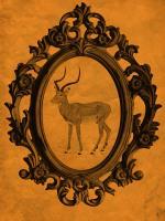 Framed Gazelle in Tangerine #89771