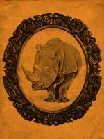Framed Rhinoceros in Tangerine #89780