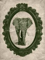 Framed Elephant in Evergreen #89790