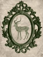 Framed Gazelle in Evergreen #89793