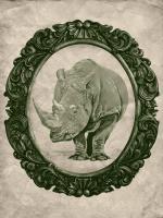 Framed Rhinoceros in Evergreen #89802