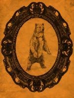 Framed Grizzly Bear in Tangerine #89807