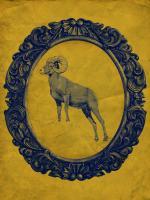 Framed Bighorn Sheep in Yellow #89812