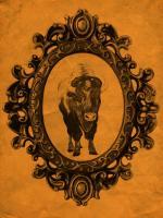 Framed Bison in Tangerine #89813