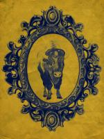 Framed Bison in Yellow #89815