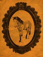Framed Paint Horse in Tangerine #89819
