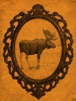 Framed Moose in Tangerine #89822