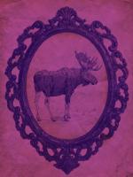 Framed Moose in Violet #89823