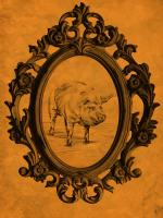 Framed Pig in Tangerine #89825