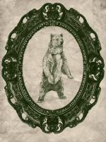 Framed Grizzly Bear in Evergreen #89829