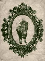 Framed Bison in Evergreen #89835