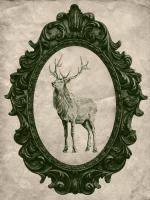 Framed Elk in Evergreen #89838