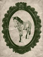 Framed Paint Horse in Evergreen #89841