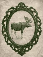 Framed Moose in Evergreen #89844