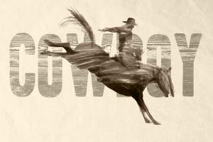 Cowboy #92179