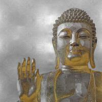 Silver and Gold Buddha #TY112674