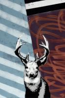 Deer - Recolor #102843