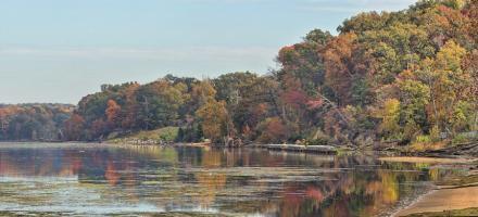 Autumn Mason Neck Virginia Potomac River #92238