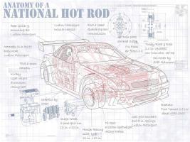 Anatomy National Hotrod #YS114471