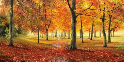 Herbstimpression #IG 3991