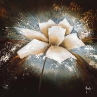 Fleur d«Žtoile I #IG 5000