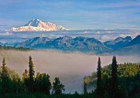 Alaska 13 #IG 5155