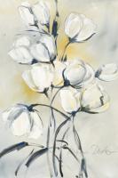 wei§e Tulpen I #IG 5550