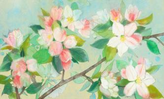 Apple Blossom #IG 7438