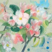 Apple Blossom 1 #IG 7443