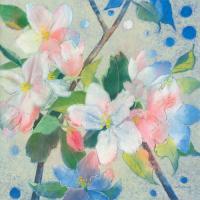 Apple Blossom 2 #IG 7444
